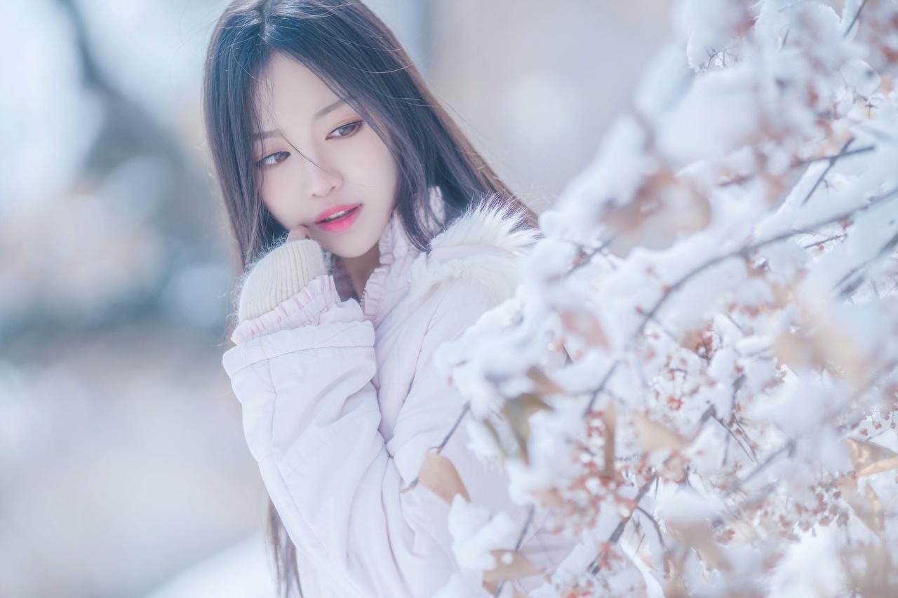 Skrivebordsbakgrunn uklar bakgrunn ung kvinne Snø Asiater Grener Blikk Bokeh Unge kvinner asiatisk ser