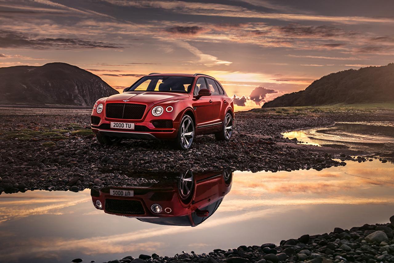 Wallpaper Bentley 2018 Bentayga V8 Worldwide Red Cars auto automobile