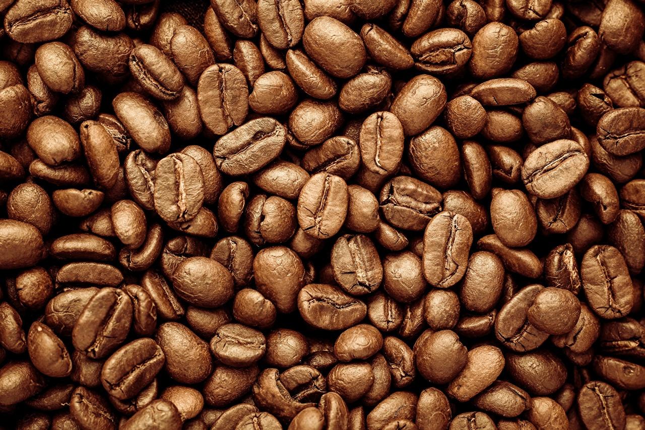 Bilder Textur Kaffee Getreide