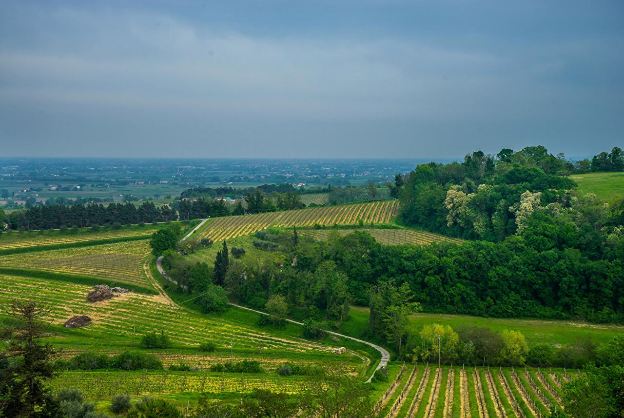 Fotos Italien Brisighella Natur Felder Straße Wege Acker