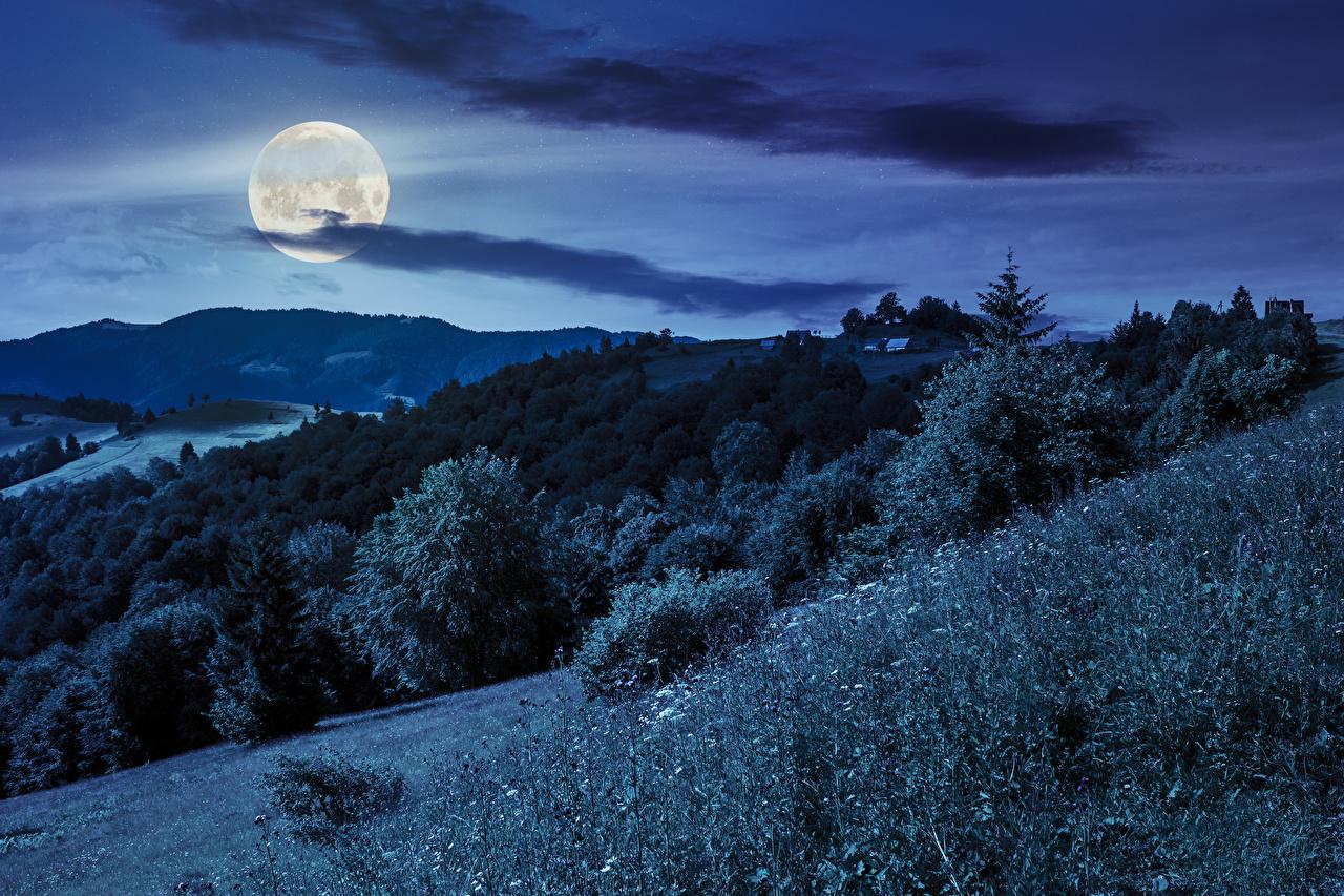 Foto Natur Gebirge Mond Himmel Wälder Gras Nacht Berg Wald