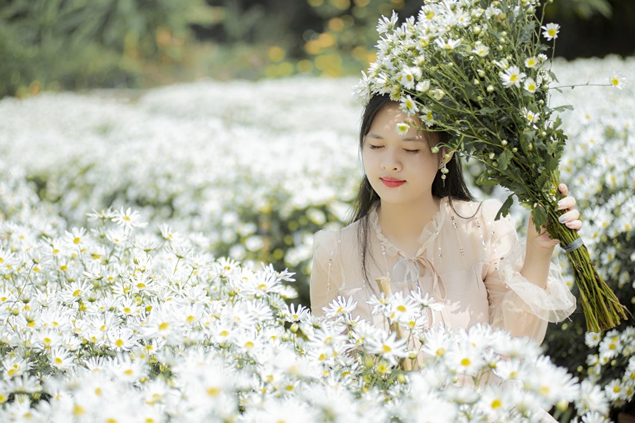 Foto unscharfer Hintergrund Blumensträuße Mädchens Asiaten Kamillen Bokeh Sträuße junge frau junge Frauen Asiatische asiatisches