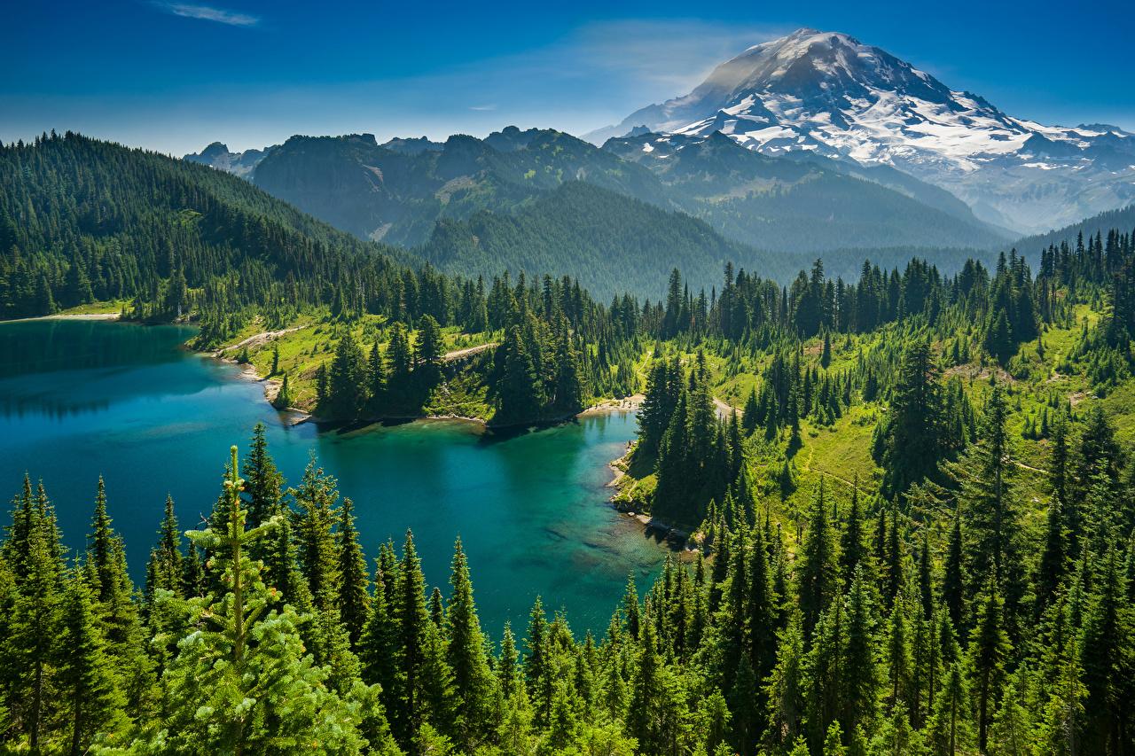 Fotos Mount-Rainier Park USA Lake Eunice Natur Fichten Gebirge See Park Wälder Landschaftsfotografie Vereinigte Staaten