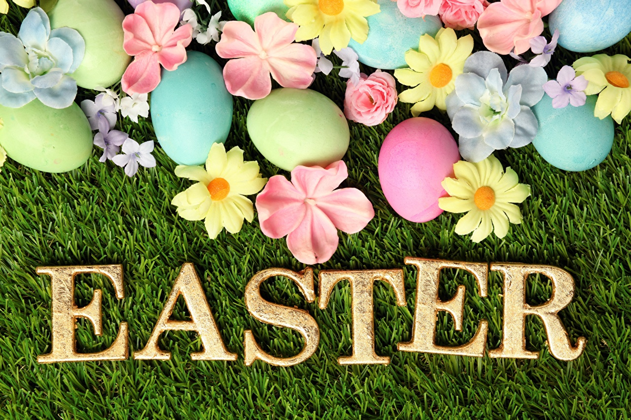 Photo Easter English egg Word - Lettering Eggs text lettering