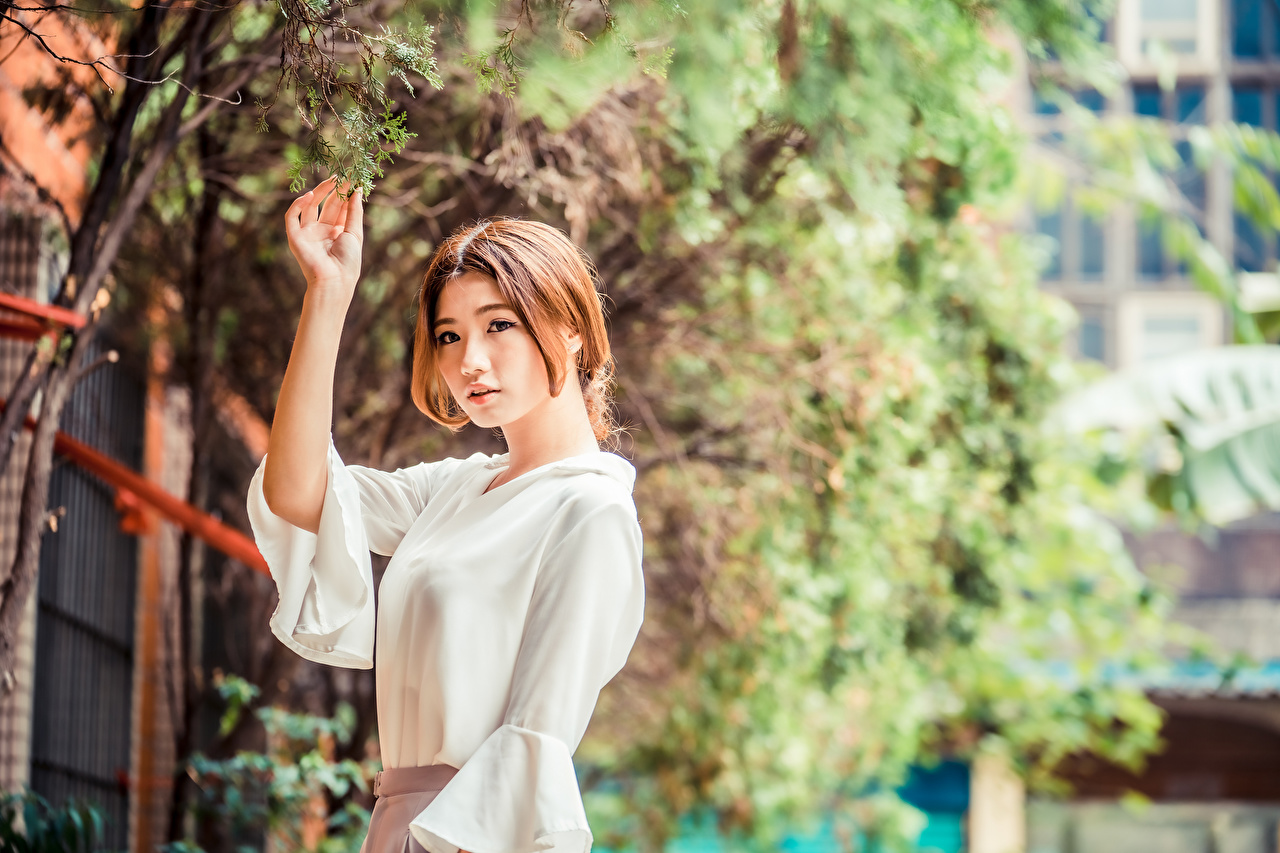 Images Foliage Brown haired Blouse Girls Asiatic Hands Branches Leaf female young woman Asian