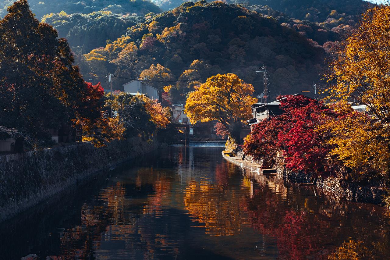 壁紙 日本 京都市 秋 山 Arashiyama 運河 木 自然