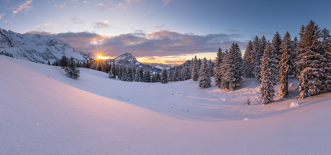 Photo Nature Panorama Switzerland Snow Winter Spruce Mountains Alps landscape photography panoramic mountain Scenery