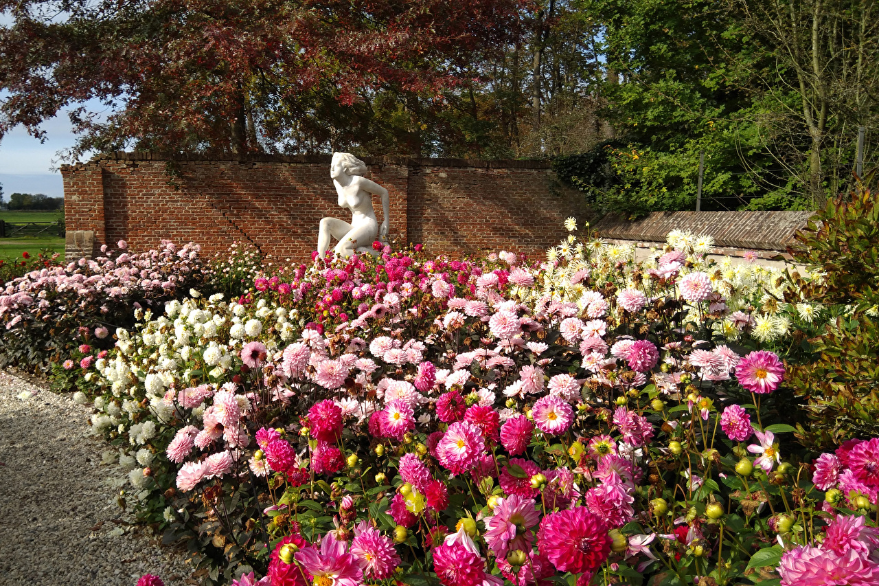 Images Netherlands Lisse Multicolor Nature Parks flower Dahlias Shrubs Sculptures park Flowers Bush