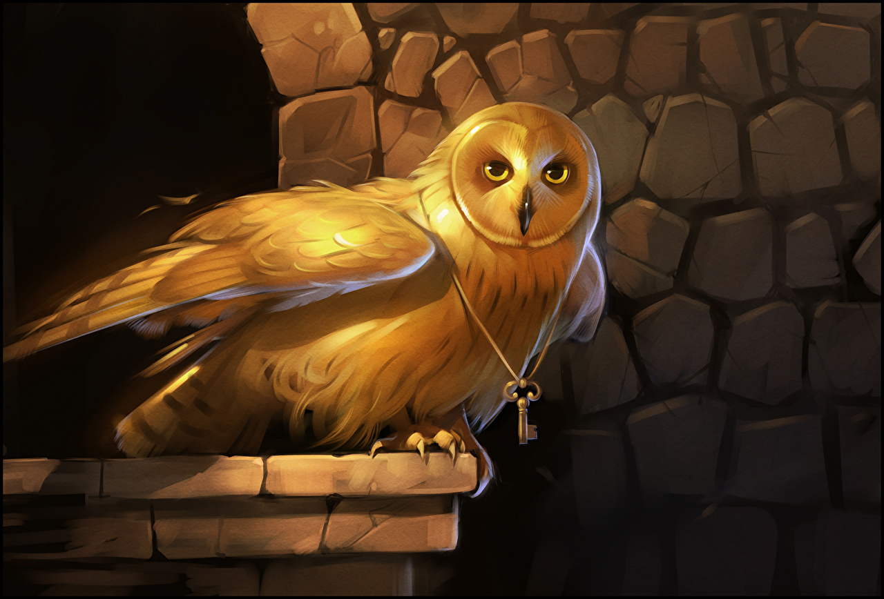 Images owl bird Fantasy Gold color Owls Birds