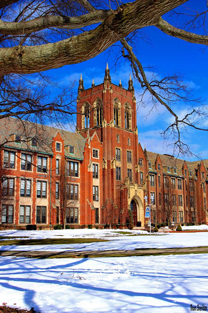 Bilder von USA South Euclid Ohio Winter Schnee Ast Städte Gebäude Vereinigte Staaten Haus