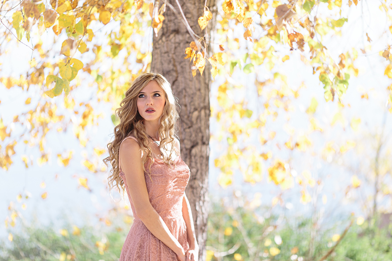 Image Blonde girl Girls Autumn female young woman