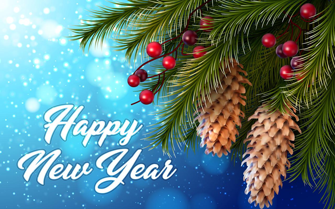 Foto Neujahr Englisch 3D-Grafik Schnee Ast Beere Zapfen
