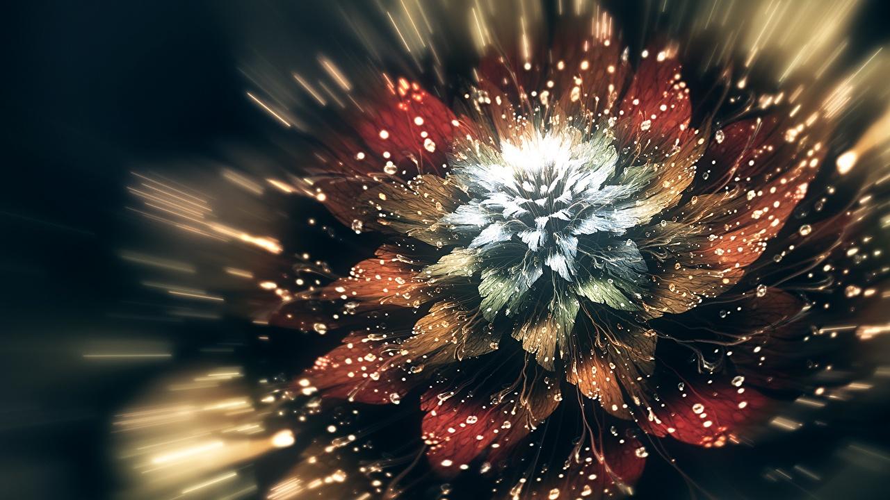 Fotos 3D-Grafik Blumen Tropfen Nahaufnahme Blüte hautnah Großansicht