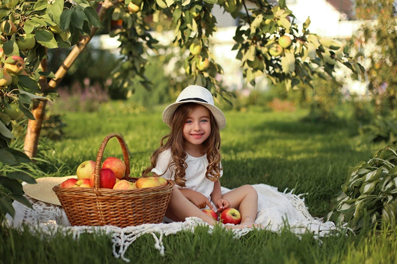 Photos Little girls Smile child Hat Apples Wicker basket Grass Sitting Children sit