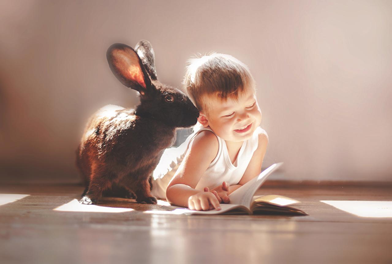 Photos Boys Rabbits Children Sleeveless shirt Animals rabbit child Singlet animal