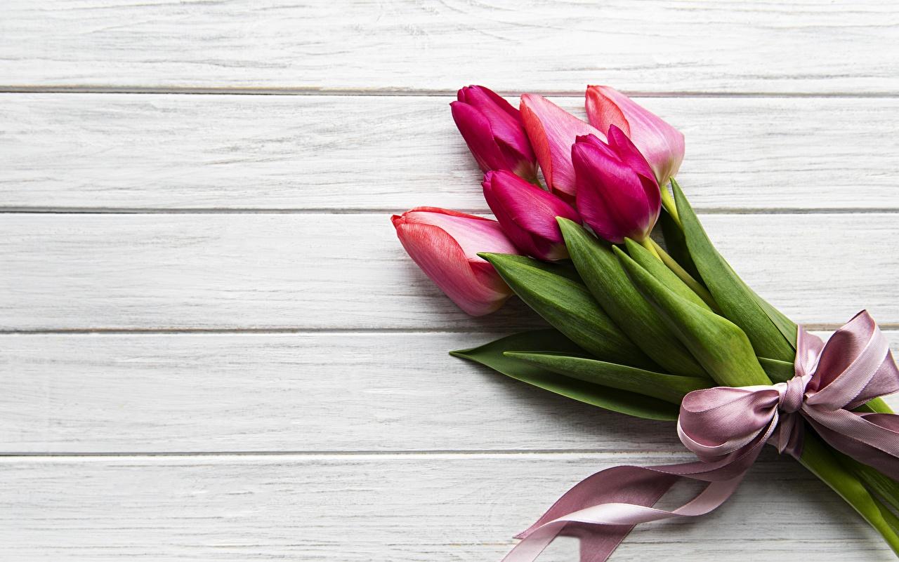Bilder Sträuße Tulpen Blumen Vorlage Grußkarte Bretter Blumensträuße Blüte