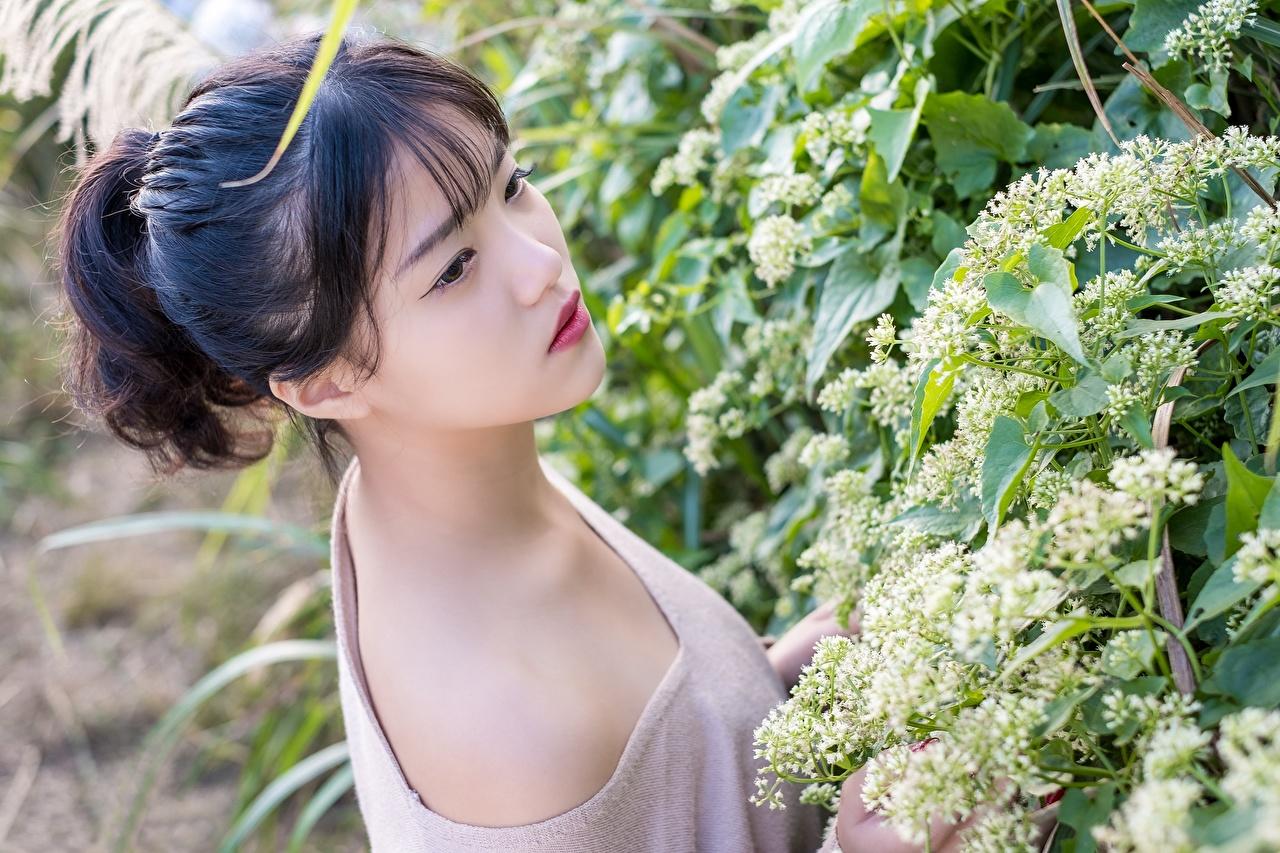Skrivebordsbakgrunn Brunette jente Bokeh Unge kvinner Asiater Blikk uklar bakgrunn ung kvinne asiatisk ser
