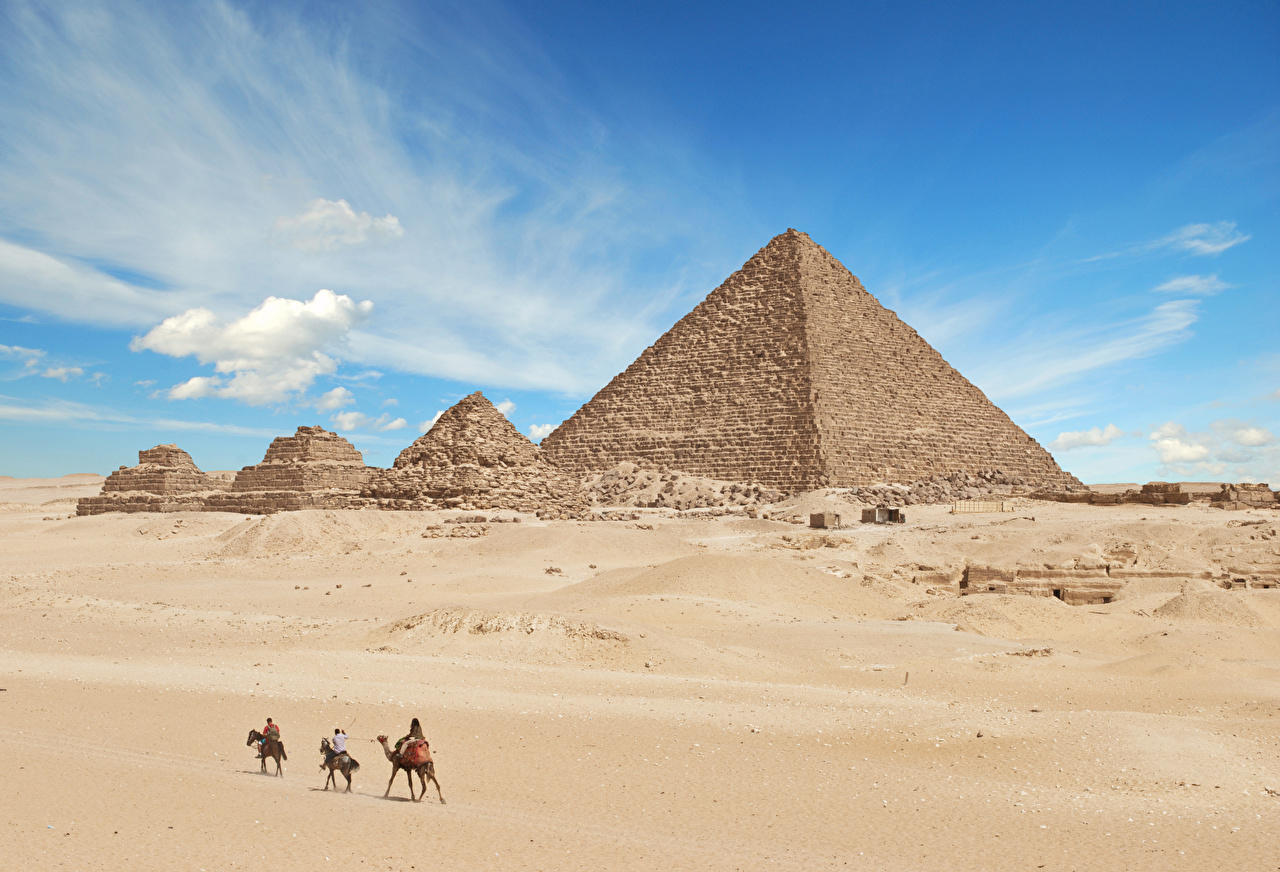 Photo Camels Egypt Giza Desert Nature Ruins Pyramid