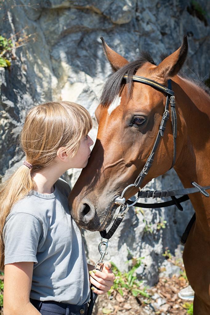 Fotos von Kleine Mädchen Pferd Dunkelbraun Kuss 2 Kopf Tiere  für Handy Pferde Hauspferd küsst küssen Zwei ein Tier