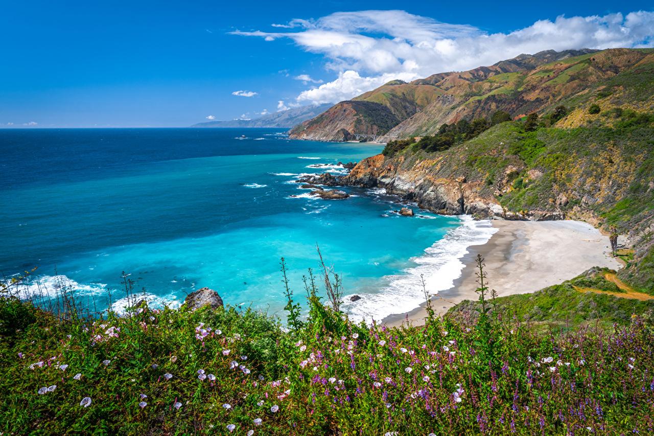 Fotos Kalifornien Vereinigte Staaten Big Sur Ozean Natur Frühling Küste USA