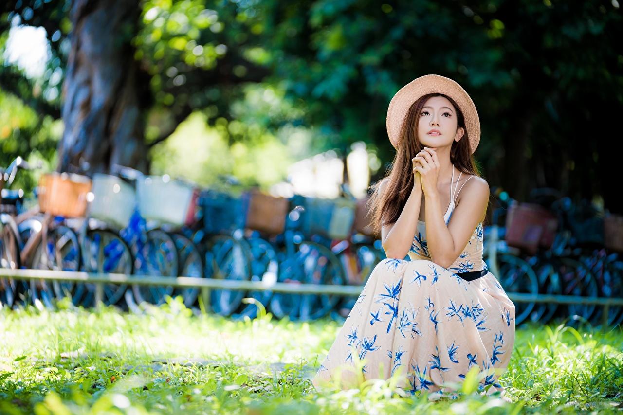 Bilder von Braune Haare unscharfer Hintergrund Der Hut Mädchens asiatisches Hand Gras sitzen Kleid Braunhaarige Bokeh junge frau junge Frauen Asiaten Asiatische sitzt Sitzend
