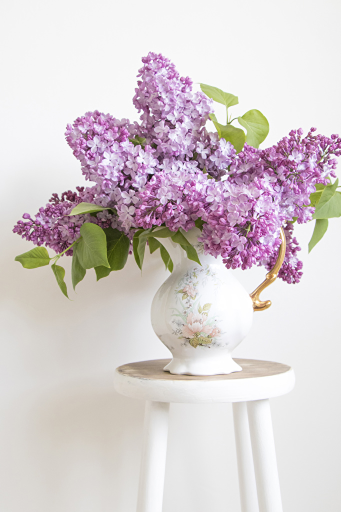 Images bouquet Lilac Flowers Vase White background  for Mobile phone Bouquets flower Syringa