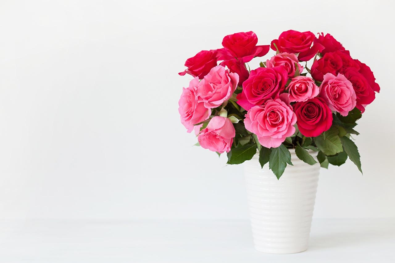 Fotos Blumensträuße Rosen Rosa Farbe Blumen Vase Vorlage Grußkarte Sträuße Rose Blüte