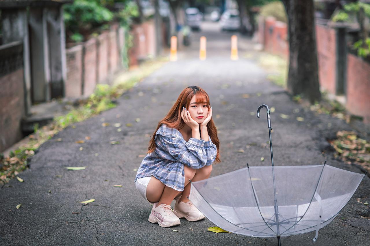 Bilder von unscharfer Hintergrund junge frau Asiatische sitzt Regenschirm Bokeh Mädchens junge Frauen Asiaten asiatisches sitzen Sitzend