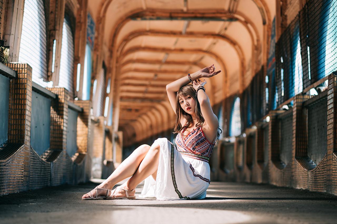 Bilder unscharfer Hintergrund junge Frauen Asiaten sitzt Blick Kleid Bokeh Mädchens junge frau Asiatische asiatisches sitzen Sitzend Starren