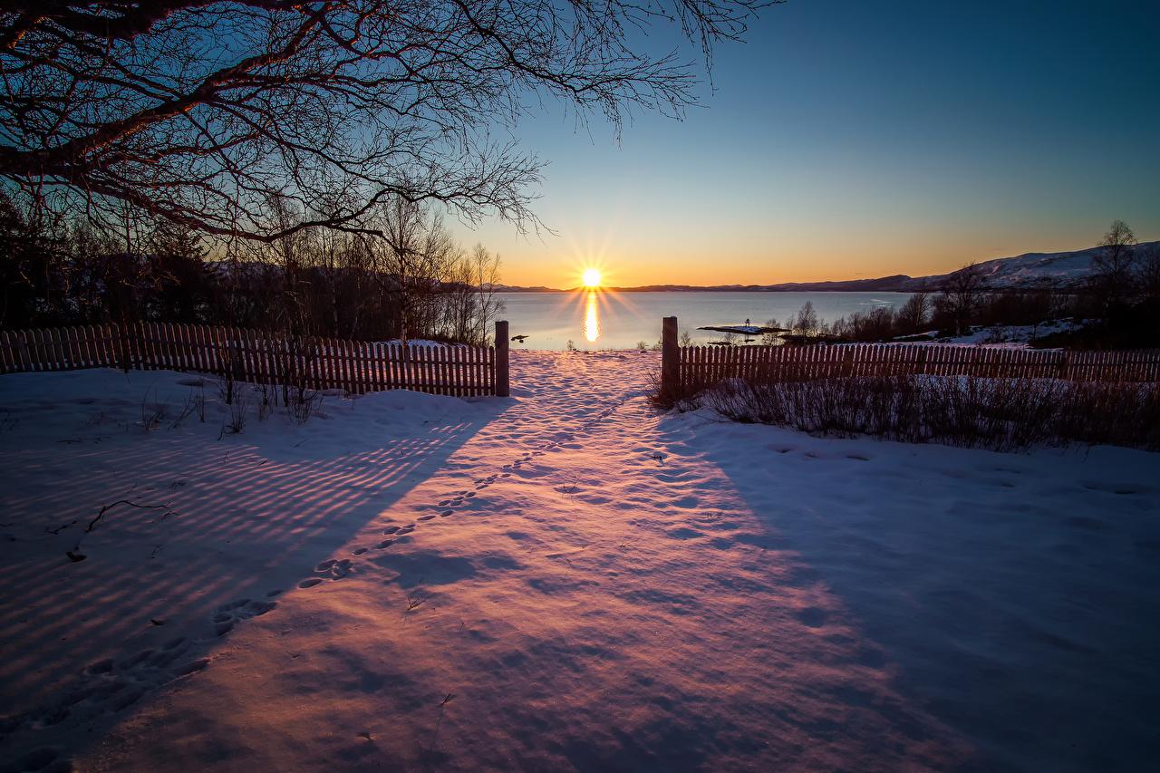 Fotos von Norwegen Sulitjelma Natur Sonne Winter Zaun Schnee Sonnenaufgänge und Sonnenuntergänge Ast