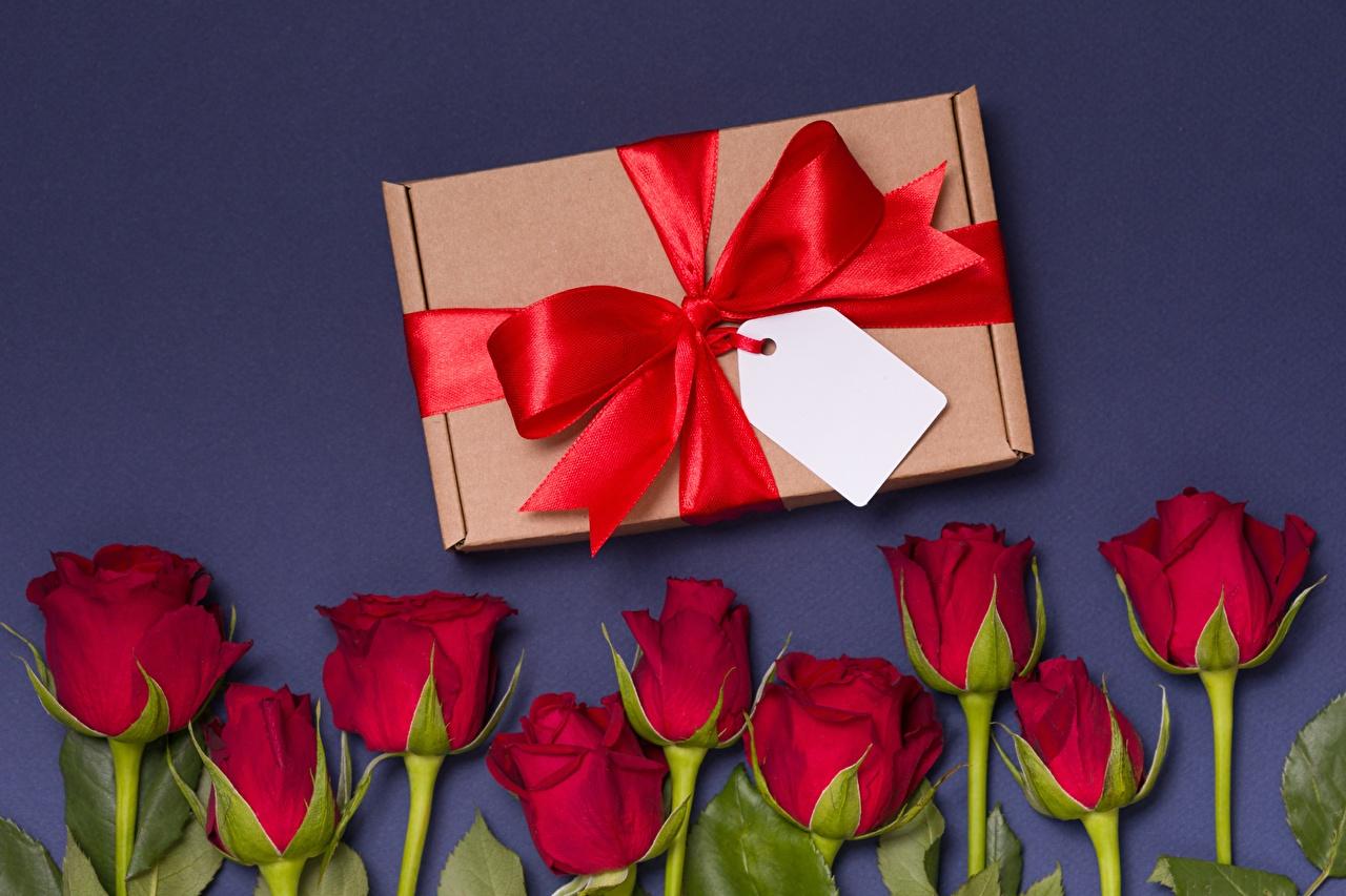 、バラ、ちょう結び、花、