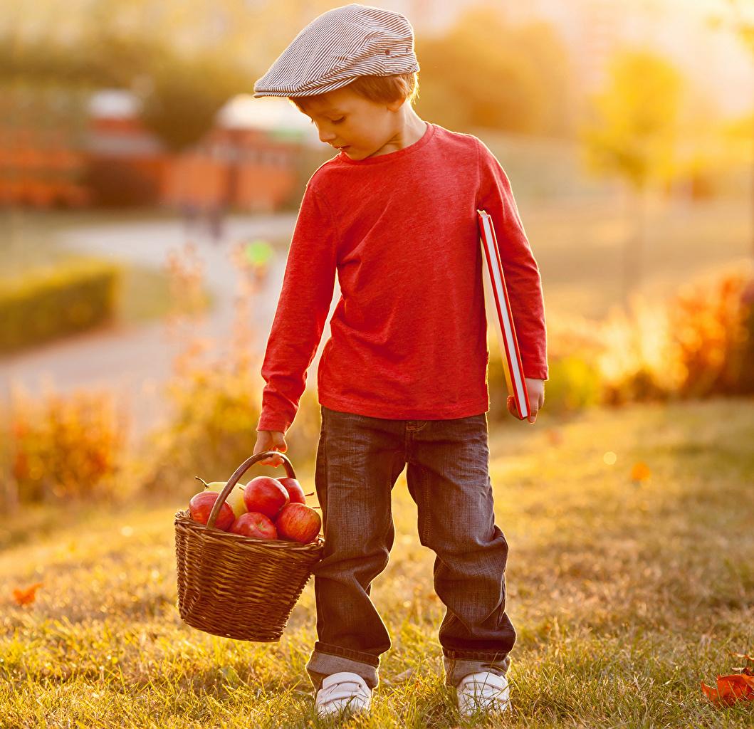 Pictures Boys child Autumn Jeans Apples Wicker basket Children
