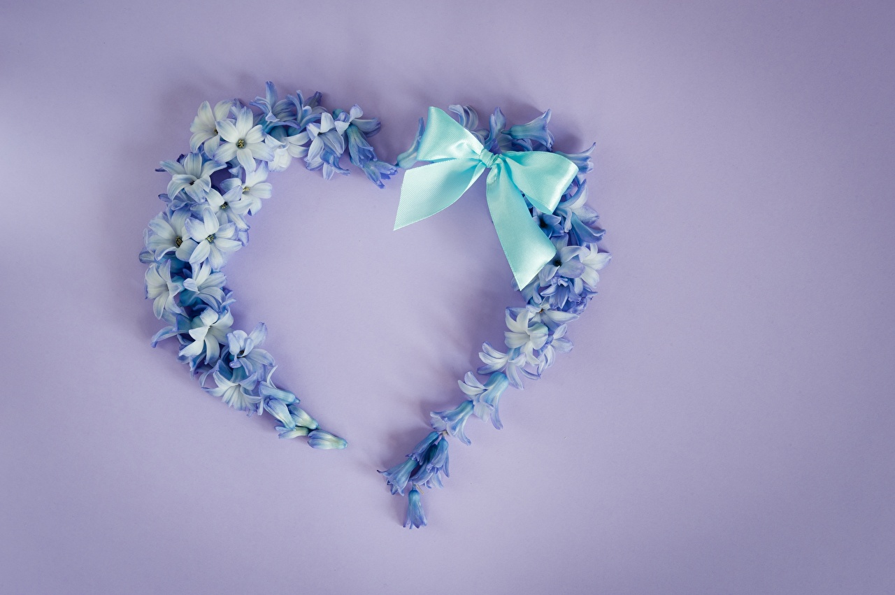 Image Heart Bowknot Colored background bow knot