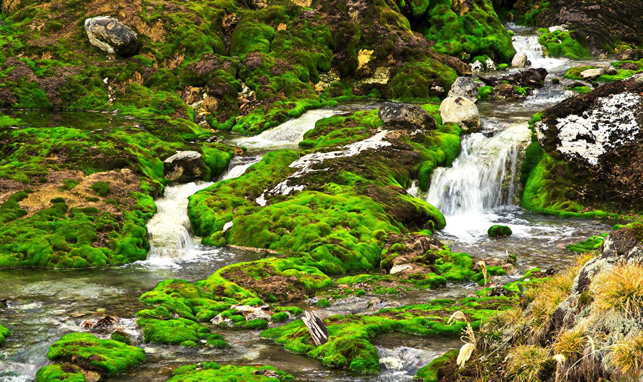 Photos Japan Nakanojo Chatsubomigoke Park Gunma prefecture Nature Waterfalls park Moss Parks