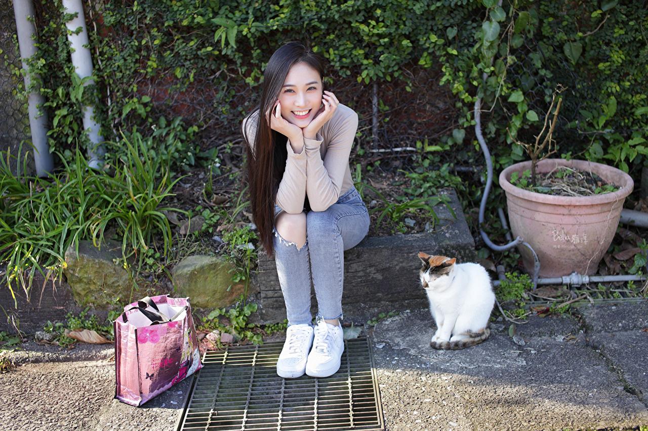 Bilder Katze Brünette Lächeln Mädchens Asiaten Sitzend Handtasche Blick Katzen Hauskatze junge frau junge Frauen Asiatische asiatisches sitzt sitzen Starren