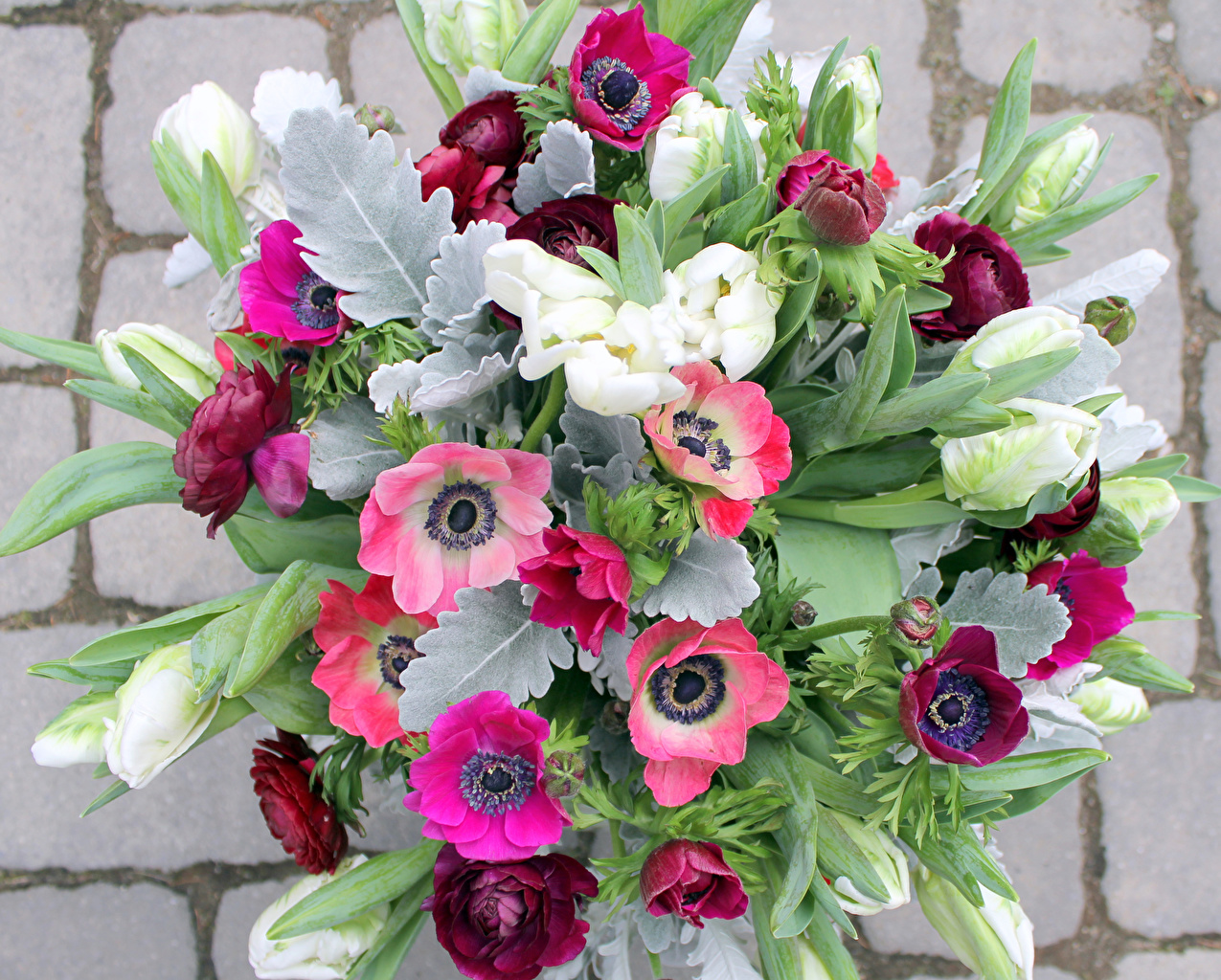 Wallpaper Bouquets Tulips Flowers Wall Anemones