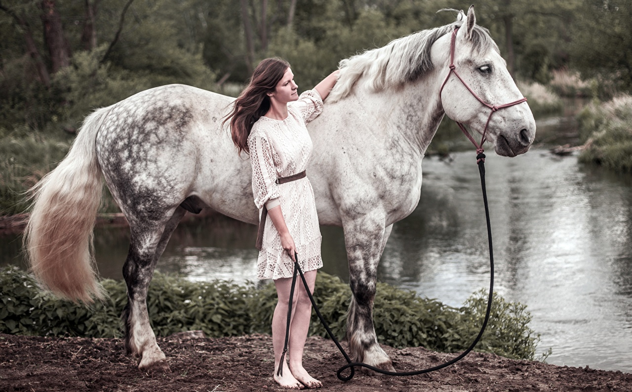 Photos horse colt male young woman Side Animals Horses Girls female animal