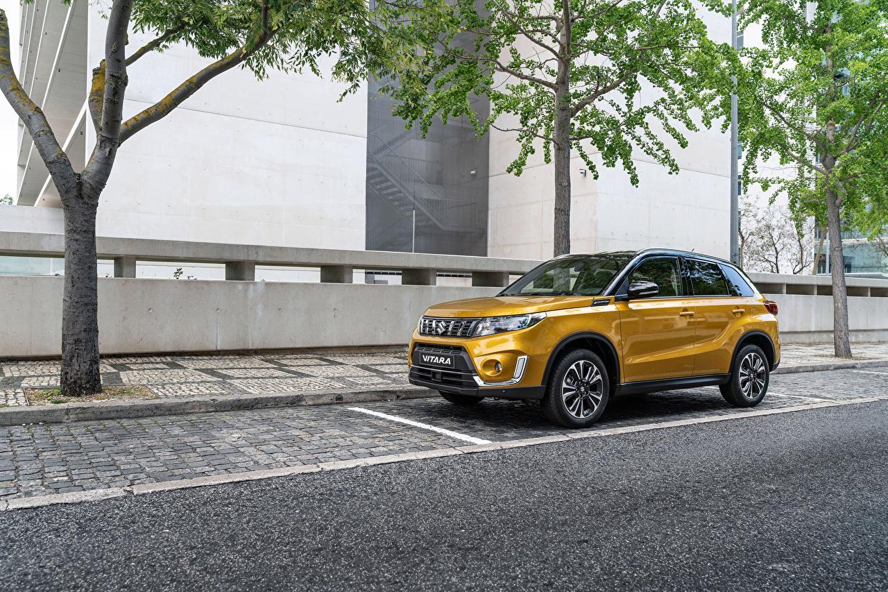 Fotos von Suzuki - Autos 2018 Vitara Worldwide Gelb Gold Farbe automobil Metallisch auto Autos