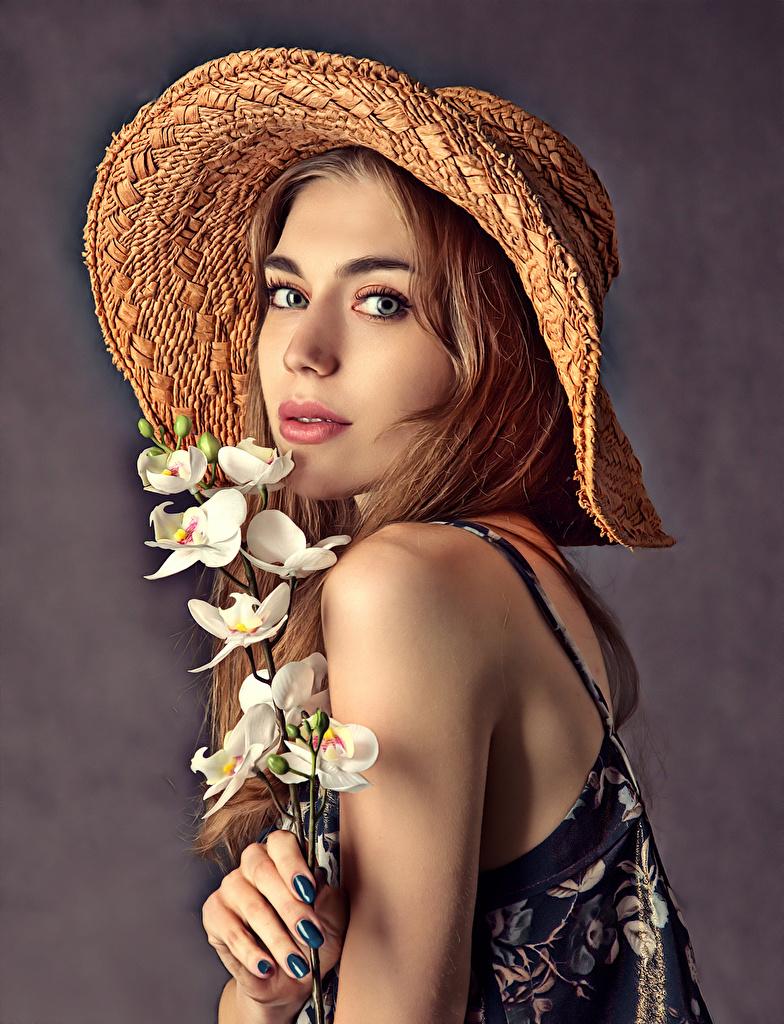 ,蘭花,帽子,臉,美麗,凝视,年輕女性,女孩,
