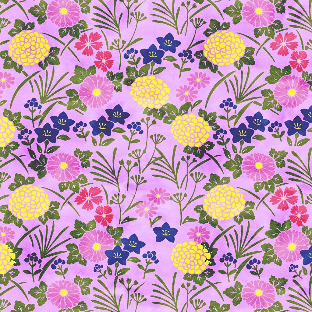 Bakgrunnsbilder Tekstur Papir blomst Malte Blomster