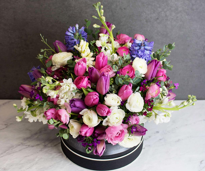 Picture Bouquets Tulips Flowers Matthiola Ranunculus