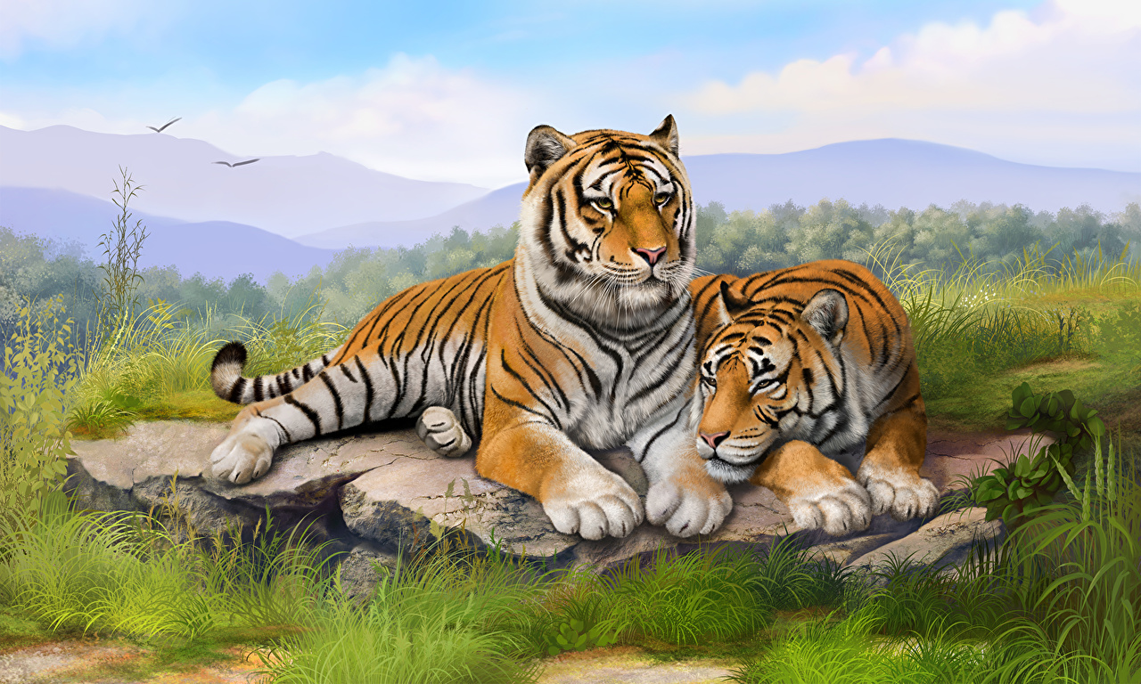 Image Tigers Big cats 2 Grass Animals tiger Two animal