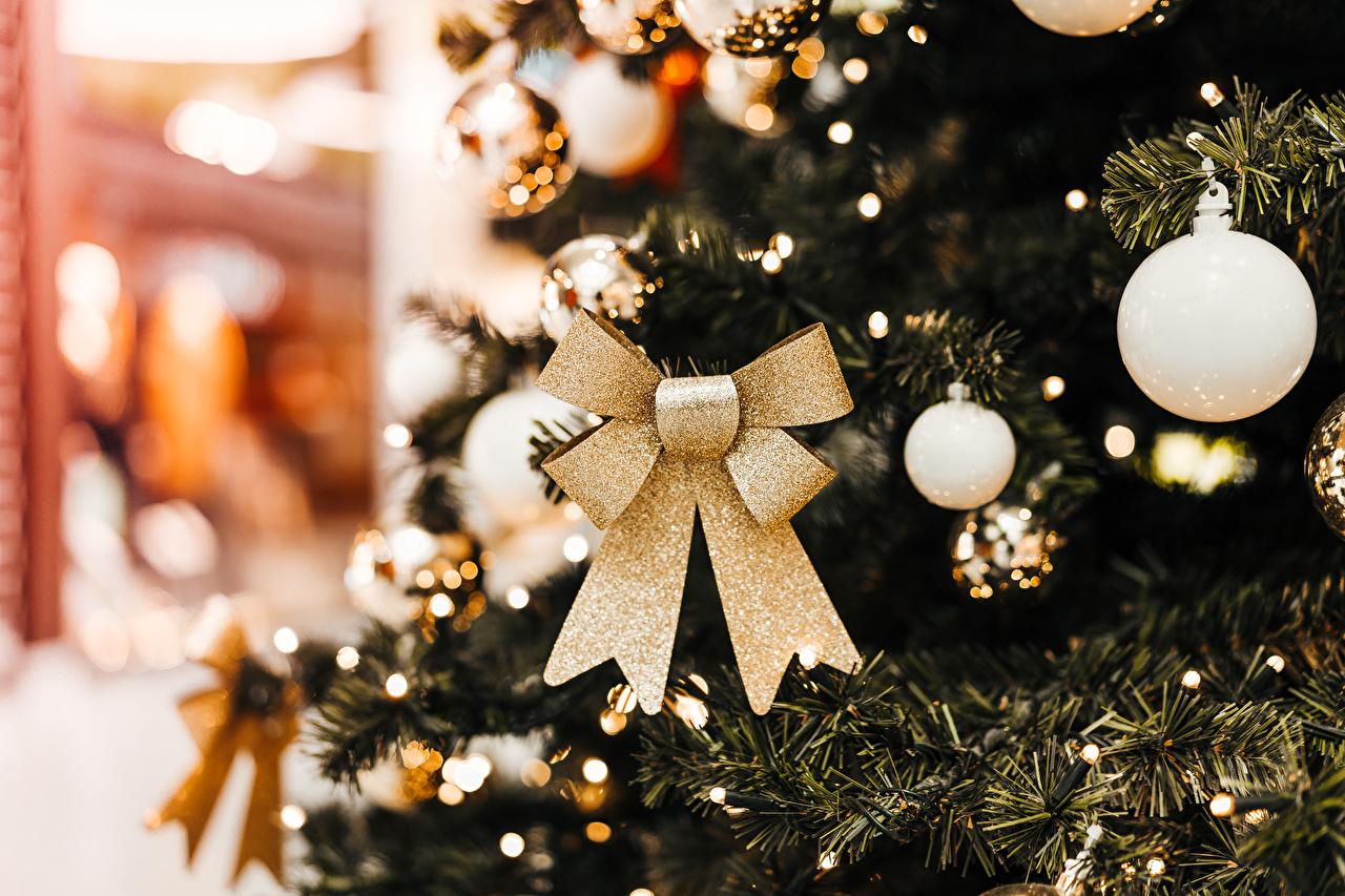 Desktop Hintergrundbilder Neujahr Weihnachtsbaum Kugeln Schleife Tannenbaum Christbaum