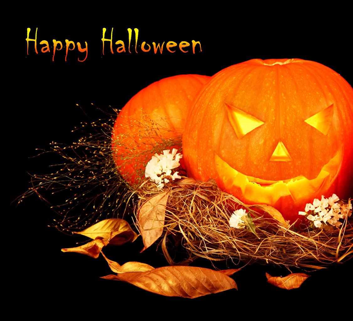 Halloween Kurbis Auf Englisch.Fotos Von Blattwerk Englisch Kurbisse Halloween Stroh Schwarzer