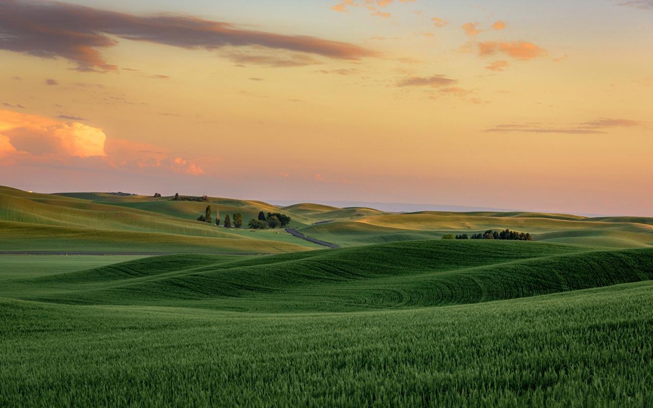Fotos von USA Palouse, Washington state Natur Acker Hügel Sonnenaufgänge und Sonnenuntergänge Vereinigte Staaten Felder Morgendämmerung und Sonnenuntergang