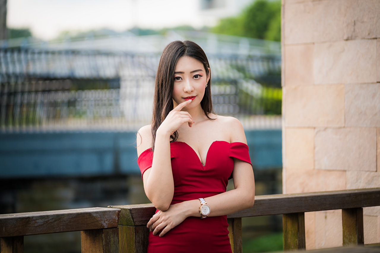 Picture Brown haired blurred background Pose young woman Asiatic Hands Staring gown Bokeh posing Girls female Asian Glance frock Dress