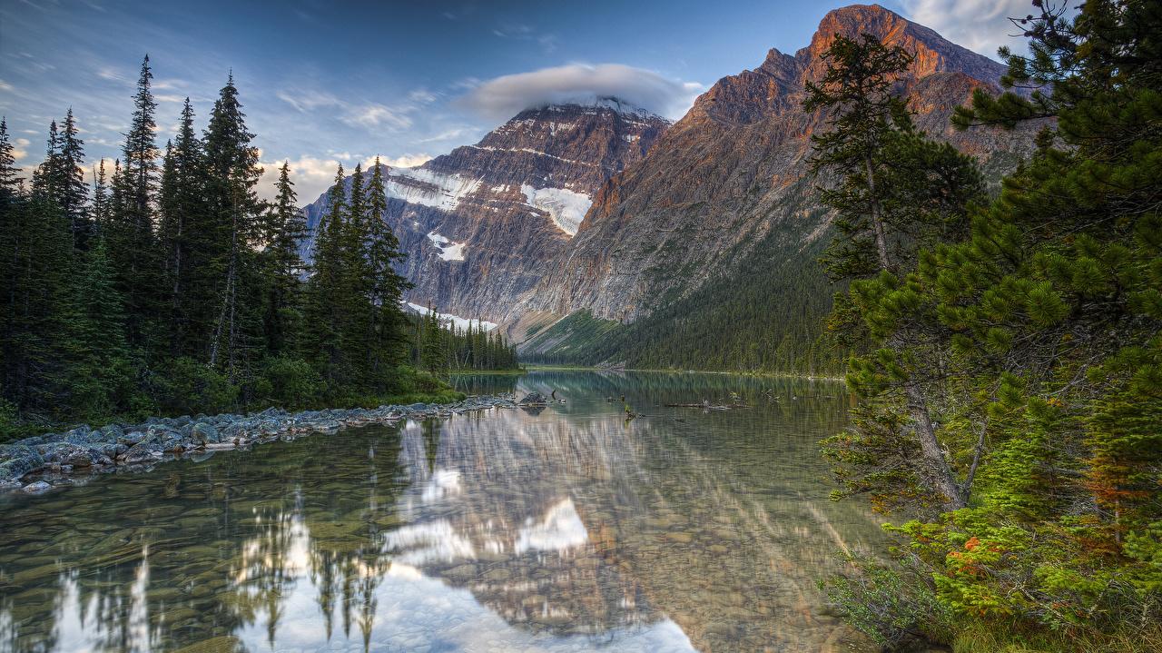 Bilder von Kanada Jasper National Park Mount Edith Cavell HDRI Natur Gebirge Fichten See Parks Laubmoose HDR Berg