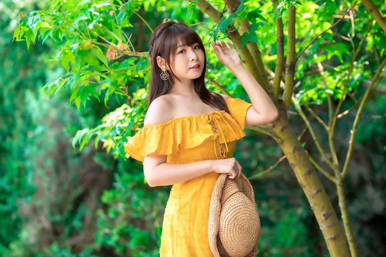 Fotos posiert Der Hut Mädchens Asiatische Starren Kleid Pose junge frau junge Frauen Asiaten asiatisches Blick