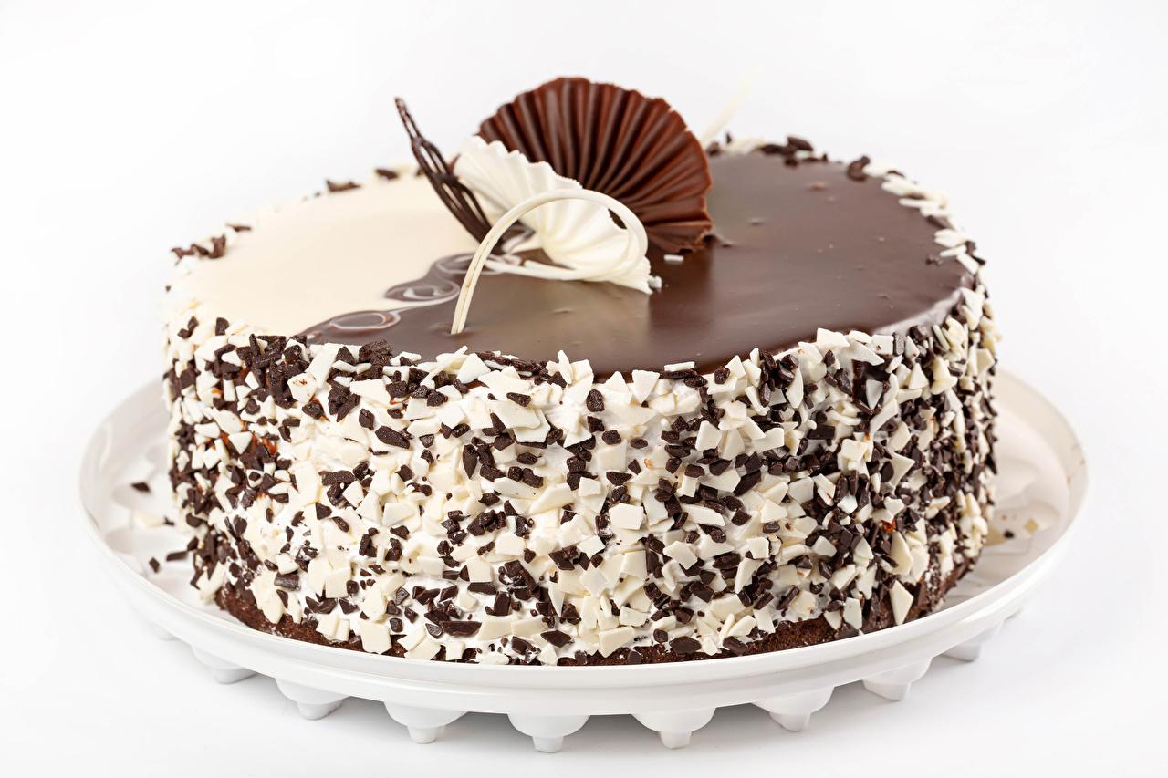Photos Chocolate Cakes Food White background Design Torte