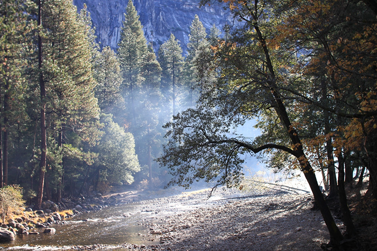 Photos Yosemite USA Autumn Nature park forest stone Trees Parks Forests Stones